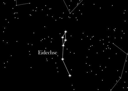 Sternbild Eidechse