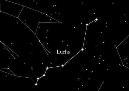 Sternbild Luchs