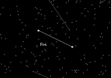 Star Sign Fox